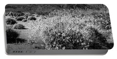 Portable Battery Charger featuring the photograph Wild Desert Flowers Blooming In Black And White In The Anza-borrego Desert State Park by Randall Nyhof