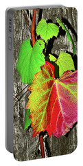 Portable Battery Charger featuring the photograph Wild Grape Vine By Kaye Menner by Kaye Menner