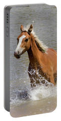 Wild Horse Splashing At The Water Hole Portable Battery Charger