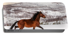 Wild Horse Portable Battery Charger by Todd Klassy