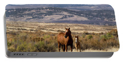 Wild Mare With Young Foal In Sand Wash Basin Portable Battery Charger