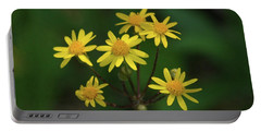Portable Battery Charger featuring the photograph Wild Meadow Daisies by LeeAnn McLaneGoetz McLaneGoetzStudioLLCcom