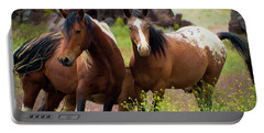 Wild Mustang Brothers Portable Battery Charger