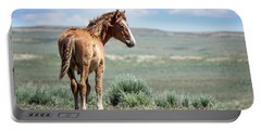 Wild Mustang Colt Of Sand Wash Basin Portable Battery Charger