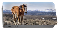 Wild Mustang Filly Of Sand Wash Basin Portable Battery Charger