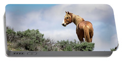 Wild Mustang Stallion Of Sand Wash Basin Portable Battery Charger