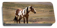 Wild Mustang Stallion Picasso Of Sand Wash Basin Portable Battery Charger
