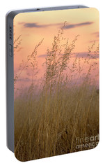 Portable Battery Charger featuring the photograph Wild Oats by Linda Lees
