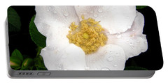 Portable Battery Charger featuring the photograph Wild Rose by Stephanie Moore