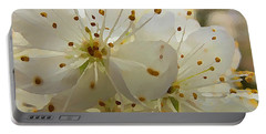 Wild Sand Plum  Portable Battery Charger