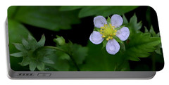 Wild Strawberry Blossom And Raindriops Portable Battery Charger
