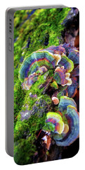 Portable Battery Charger featuring the photograph Wild Striped Mushroom Growing On Tree - Paradise Springs - Kettle Moraine State Forest by Jennifer Rondinelli Reilly - Fine Art Photography