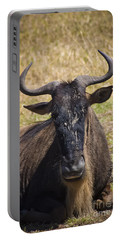 Wildebeest Taking A Break Portable Battery Charger by Darcy Michaelchuk