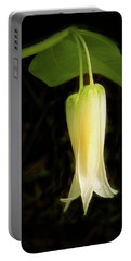 Smiths Fairybell Wildflower Portable Battery Charger