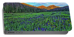 Portable Battery Charger featuring the photograph Wildflower Park by Scott Mahon