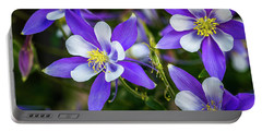 Wildflowers Blue Columbines Portable Battery Charger by Teri Virbickis