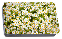 Portable Battery Charger featuring the photograph Wildflowers by Holly Kempe