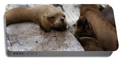 Portable Battery Charger featuring the photograph Wildlife Of The Ballestas Islands by Aidan Moran