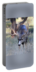 Portable Battery Charger featuring the photograph Wildlife Wonder by Shane Bechler