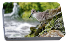 Portable Battery Charger featuring the photograph Willet By The Sea by Paul Mashburn