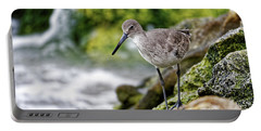 Willet By The Sea Portable Battery Charger by Paul Mashburn