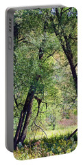 Willow Cathedral Portable Battery Charger