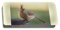 Portable Battery Charger featuring the photograph Wind Blown Cardinal  by Terry DeLuco