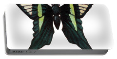 Portable Battery Charger featuring the painting Winged Jewels 3, Watercolor Tropical Butterfly With Curled Wing Tips by Audrey Jeanne Roberts