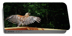 Wingspan Of Hawk Portable Battery Charger