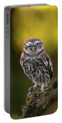 Winking Little Owl Portable Battery Charger