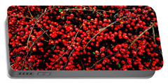 Winter Berries Portable Battery Charger