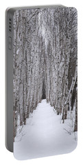 Winter Birch Path Portable Battery Charger