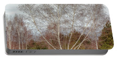 Winter Birch Portable Battery Charger