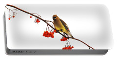 Winter Birds - Waxwing  Portable Battery Charger