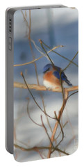 Winter Bluebird Art Portable Battery Charger