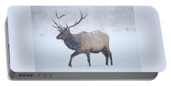 Winter Bull Portable Battery Charger
