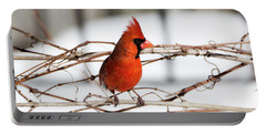 Winter Cardinal 12 Portable Battery Charger by David Stasiak