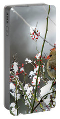 Winter Cardinal Portable Battery Charger by Gary Wightman