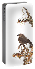 Winter Cowbird On Sunflower Portable Battery Charger