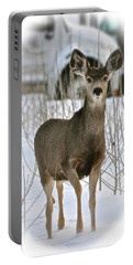 Winter Deer On The Tree Farm Portable Battery Charger