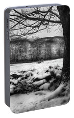Portable Battery Charger featuring the photograph Winter Dreary by Bill Wakeley