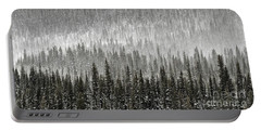 Portable Battery Charger featuring the photograph Winter Forest by Brad Allen Fine Art