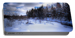 Portable Battery Charger featuring the photograph Winter Highlights by David Patterson