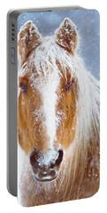 Winter Horse Portrait Portable Battery Charger