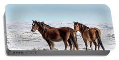 Winter In Sand Wash Basin - Wild Mustangs Portable Battery Charger