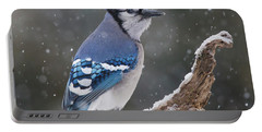 Portable Battery Charger featuring the photograph Winter Jay by Mircea Costina Photography
