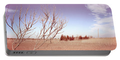Portable Battery Charger featuring the photograph Winter Marshlands by Colleen Kammerer