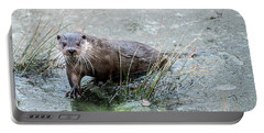 Winter Otter Portable Battery Charger