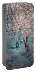 Winter Path #h1 Portable Battery Charger