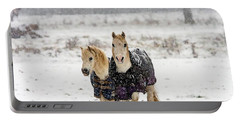 Portable Battery Charger featuring the photograph Winter Pony by Cliff Norton
